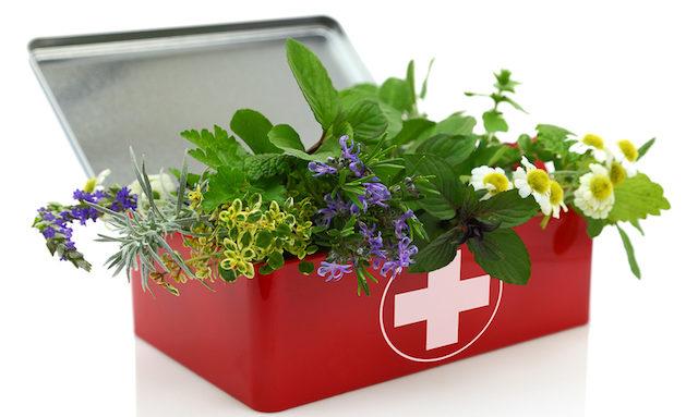 Les meilleurs livres pour apprendre à se soigner avec les plantes